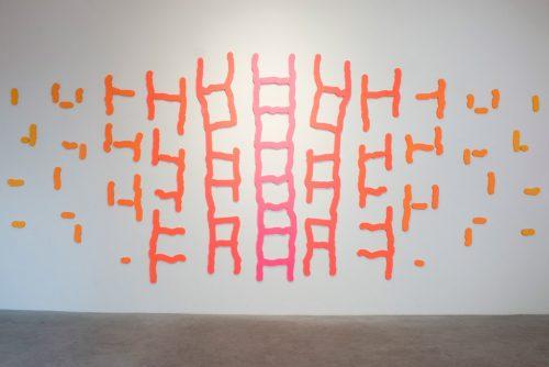 Ladders Series
